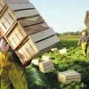 Operai agricoli, trattativa al via. Varata la piattaforma di rinnovo Ccnl