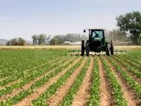 Imu agricola: Errori non sanzionabili