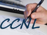 Contratti: Rinnovato CCNL Cooperazione agricola