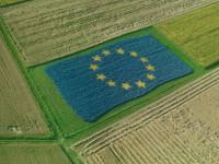"PAC: ""aperture"" del commissario europeo Hogan sul tema del lavoro"
