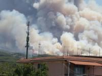 Incendio Parco Nazionale del Vesuvio, interviene Vera Buonomo presidente COPAGRI Campania.