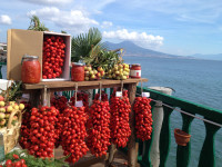 Promozione dell'Agroalimentare – La Regione Campania approva il Piano fieristico 2018/2019