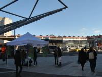 Napoli: Piazza Garibaldi; di buon mattino…due firme per far bene al mio Paese!