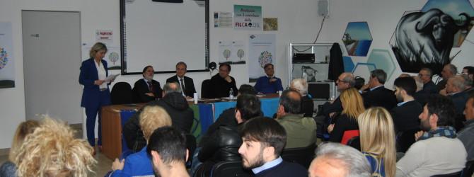 Congresso Regionale UIMEC Campania: Vera Buonomo confermata, all'unanimità, Presidente Regionale