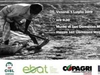 """Un territorio """"comune""""; Napoli sede di presentazione del progetto europeo """"Labour – int 2″."""