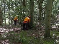 """Forestazione, I Sindacati chiedono incontro in Regione: """"STABILIZZAZIONE QUESTIONE NON PIU' RINVIABILE""""."""
